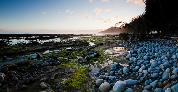 Hiking-and-Landscapes-of-the-West-Coast-Trail-Canada-photo-Kevin-Light-Photography-MG-2704.jpg